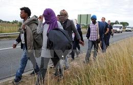 Pháp tạm dừng dỡ bỏ khu lều trại Calais
