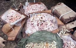 Quảng Ninh: Tiêu hủy 2,5 tấn chân gà không rõ nguồn gốc