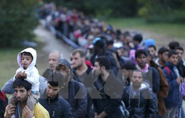 Hungary sẽ trưng cầu dân ý về hạn ngạch tiếp nhận người di cư