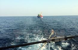 Một tàu cá cùng 7 ngư dân phát tín hiệu cấp cứu trên biển Trường Sa