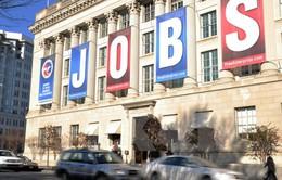 Thị trường lao động Mỹ khởi sắc