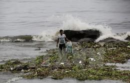 Hơn 12.000 người dân Philippines phải sơ tán do bão