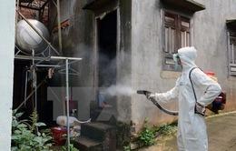 Bình Dương công bố dịch Zika cấp xã, phường