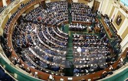 Giáo sư luật được bầu làm Chủ tịch Quốc hội mới của Ai Cập