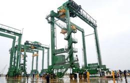 Xuất khẩu 8 cẩu trục bốc dỡ container sang Saudi Arabia