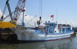 Khan hiếm gỗ, ngư dân chuyển sang đóng tàu cá composite