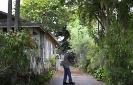 Mỹ phát hiện những nhóm muỗi đầu tiên mang virus Zika