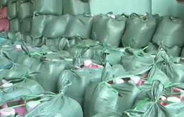 Giáp Tết, Bình Phước phát hiện 2 tấn tương ớt không rõ nguồn gốc