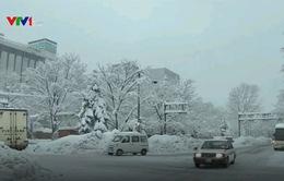 Tuyết rơi dày tại Nhật Bản, giao thông bị ảnh hưởng nghiêm trọng