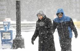Bão tuyết tại Mỹ, 28 người thiệt mạng