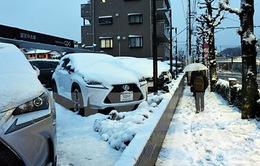 Gần 170 người bị thương vì tuyết rơi quá dày tại Nhật Bản