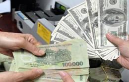 Tỷ giá USD/VND tiếp tục giảm mạnh trong dịp cận Tết
