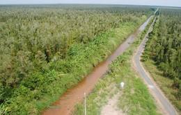 Tăng diện tích Vườn quốc gia U Minh Hạ
