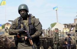 Ukraine nhất trí thực thi ngừng bắn ở miền Đông