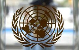 Liên Hợp Quốc kêu gọi hỗ trợ nhân đạo hơn 22 tỷ USD
