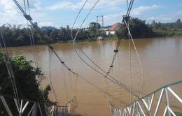 Đề xuất xây cầu bê tông thay thế cầu treo Tà Lài tại Đồng Nai