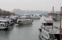 """Hàng nghìn lượt du khách """"xông đất"""" Đà Nẵng và Vịnh Hạ Long"""
