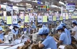 Ngành dệt may, da giầy: Tận dụng cơ hội từ TPP, hướng tới sản xuất bền vững