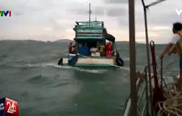 Bộ đội biên phòng Kiên Giang cứu sống 12 ngư dân bị chìm tàu