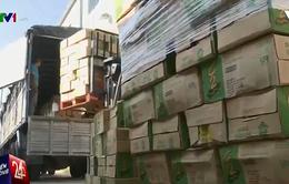 Nước C2 và Rồng Đỏ nhiễm chì: Xử phạt gần 6 tỷ đồng với công ty URC Hà Nội