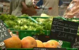 4 tập đoàn bán lẻ lớn nhất châu Âu nhận tiêu thụ hàng hóa Việt Nam