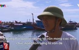 Người dân mong chờ gì từ công bố kết quả nguyên nhân cá chết bất thường?