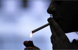 Nhật Bản: Hút thuốc lá nơi công cộng sẽ bị phạt 2.600 USD
