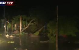 Chưa thể khắc phục sự cố mất điện diện rộng tại Nam Định sau bão