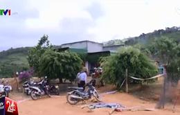 Khoảng 100 người tham gia vụ truy sát kiểm lâm tại Lâm Đồng