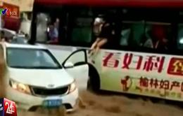 Thót tim màn giải cứu hành khách trên ô tô bị lũ cuốn trôi