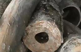 Đốt thành tro 2 tấn ngà voi và 70 kg sừng tê giác