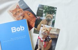 """Hành trình phiêu lưu cùng """"Bob - Chú mèo đường phố"""""""