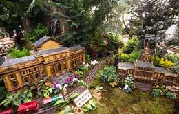 Kỳ thú triển lãm xe lửa trong vườn thực vật thu nhỏ tại Mỹ