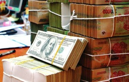 Diễn biến tỷ giá vẫn trong tầm kiểm soát của Ngân hàng Nhà nước