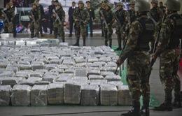 Peru tiêu hủy hơn 7 tấn ma túy