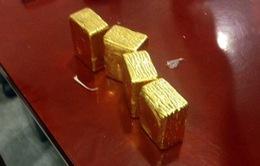 Hành khách nước ngoài vận chuyển tượng vàng qua đường hàng không