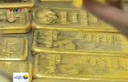Báo động tình trạng buôn lậu vàng qua biên giới phía Nam