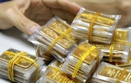 Giá vàng miếng trong nước giảm mạnh theo thế giới