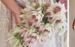 Xu hướng chọn váy cưới mới của nhiều cô dâu Mỹ