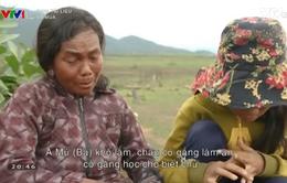 Ba mùa - Câu chuyện ám ảnh về cái đói đã chạm đến trái tim khán giả