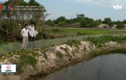 Phát huy hiệu quả kinh tế vùng đất cát tỉnh Thừa Thiên Huế