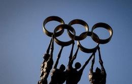 Olympic Rio 2016 và đoàn thể thao đặc biệt