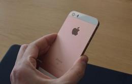 """Apple ngừng sản xuất iPhone SE số lượng lớn do """"ế hàng"""""""