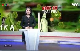 Triển khai các biện pháp điều trị thai phụ nhiễm Zika tại TP.Hồ Chí Minh