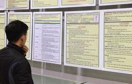 Hà Nội: 600 việc làm bán thời gian dành cho sinh viên dịp hè