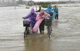 Mưa lũ ở Bình Định, 2 người thiệt mạng, 1 người mất tích