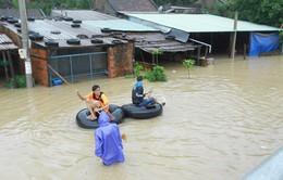 Bình Định di dời khẩn cấp người dân vùng ngập lũ