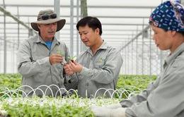 Doanh nhân và hội nhập: Xây dựng mối liên kết trong sản xuất nông nghiệp (15h35, ngày 12/11, VTV1)