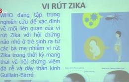 Đăk Lăk triển khai công tác phòng chống Zika