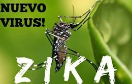 Virus Zika tiếp tục lan rộng tại Nam Mỹ